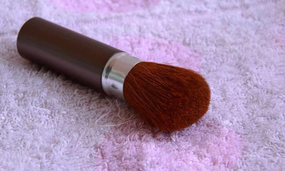 Best Blush Brushes Ideas