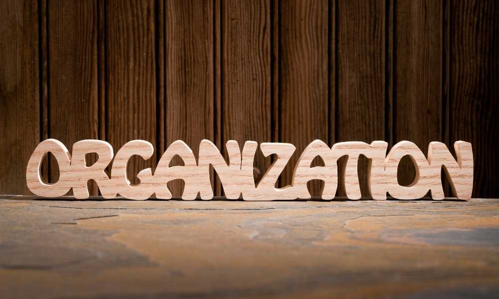 What is the best Organizer?