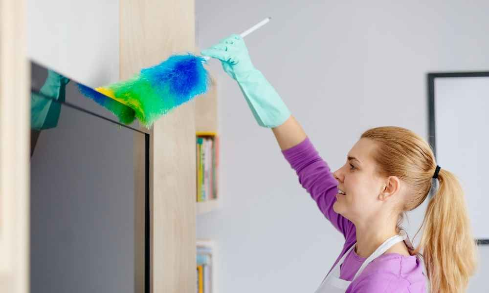Best Cleaning Dusting Ideas
